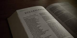 Ecclesiastes and Work | Bible Commentary | Theology of Work