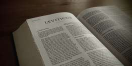 Leviticus and Work