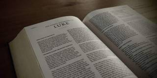 Commentary Building Trust Between >> Luke And Work Bible Commentary Theology Of Work